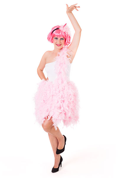 Schminkanleitung Flamingo Schmuckbild mit Kostüm